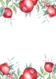 Watercolor pomegranate (garnet) wreath. Royalty Free Stock Photo