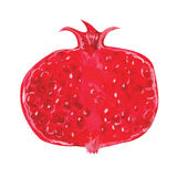 Watercolor pomegranate Royalty Free Stock Photos