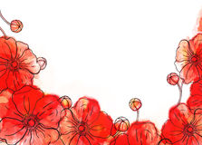 Watercolor poppy background Stock Photography