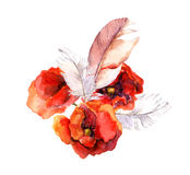 Watercolor poppy flower and feather. Floral watercolor Royalty Free Stock Image