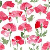 Watercolor Poppy seamless Pattern. Stock Image