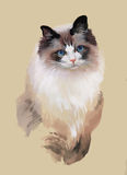 Watercolor portrait of cat illustration vector Stock Photography