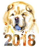 Watercolor portrait of chow-chow dog. Cute Dog. Dog T-shirt graphics. watercolor chow-chow dog illustration. Symbol of the year 2018 Royalty Free Stock Photos