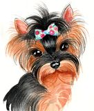 Yorkshire Terrier. Watercolor portrait of a cute Yorkshire Terrier dog Stock Images