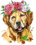 Watercolor portrait of golden retriever with flower. Cute Dog. Dog T-shirt graphics. watercolor golden retriever illustration in a wreath of peonies Stock Photos