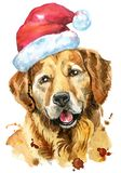 Watercolor portrait of golden retriever with Santa hat. Cute Dog. Dog T-shirt graphics. watercolor golden retriever illustration with Santa hat. New year 2018 Royalty Free Stock Photo