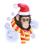 Watercolor portrait of monkey in Santa Clause hat Stock Photo