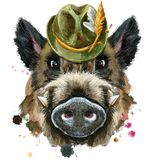 Watercolor portrait of wild boar with green hat. Cute piggy green hat. Wild boar for T-shirt graphics. Watercolor brown boar illustration stock illustration