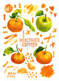 Watercolor Poster With Tangerines, Green Apple Stock Image