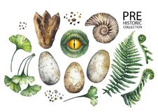 Watercolor prehistoric collection. Prehistoric watercolor hollection of dinosaur body parts, fossils and plants. Hand painted design elements  on white Stock Photography