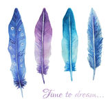Watercolor print with feathers and romantic script. Can be used for t-shirts, card, postcard etc Royalty Free Stock Image