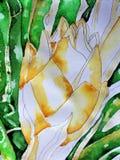 Watercolor in Progress Royalty Free Stock Photos