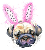 Watercolor pug dog illustration. Royalty Free Stock Photo