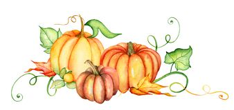 Free Watercolor Pumpkin And Autumn Leaves. Harvest Composition. Happy Thanksgiving Day. Hand Drawn Illustration Royalty Free Stock Photo - 126285785