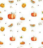 Watercolor pumpkin background Royalty Free Stock Photo