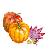 Watercolor pumpkin and fall leaf Royalty Free Stock Photography