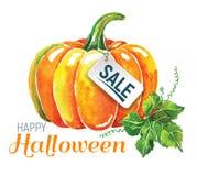 Watercolor Pumpkin. Happy Halloween Composition. Royalty Free Stock Image