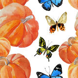 Watercolor pumpkin pattern Stock Images