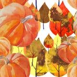 Watercolor pumpkin pattern Stock Photography