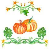 Watercolor pumpkin set with leaves. Autumn Hand drawn illustration stock illustration