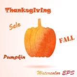Watercolor Pumpkin Royalty Free Stock Image