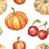 Watercolor autumn seamless pattern with hand painted yellow and orange pumpkins and red apples, isolated on white background.