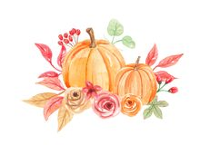 Free Watercolor Pumpkins Flowers Hand Painted Fall Autumn Bouquet Royalty Free Stock Images - 99827459