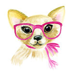 Watercolor puppy dog illustration Stock Image