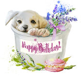 Watercolor puppy with flowers Stock Images