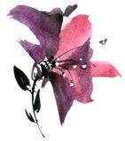 Watercolor purple flower Stock Photography