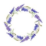 Watercolor purple lavender flowers. Floral botanical flower. Frame border ornament square. stock illustration