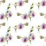 Watercolor purple orchids seamless pattern. Hand painted on a white background Royalty Free Stock Images