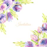 Watercolor purple peonies and roses card template, wedding, greeting, invitation card design. Hand painted on a white background Royalty Free Stock Image