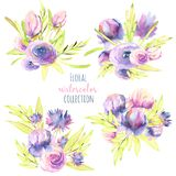 Watercolor purple and pink peonies, roses and asters bouquets set Stock Illustration