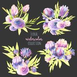 Watercolor purple and pink peonies, roses and asters bouquets set Royalty Free Illustration