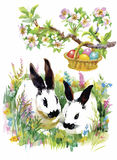 Watercolor rabbits in green grass vector illustration Royalty Free Stock Photography