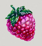Watercolor raspberries Royalty Free Stock Photography