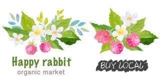 Watercolor raspberry Logos Royalty Free Stock Photos