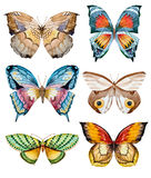 Watercolor raster butterflies