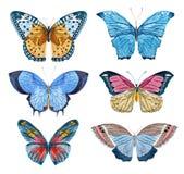 Watercolor raster butterflies Royalty Free Stock Photos