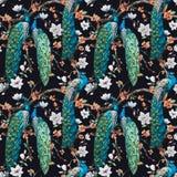 Watercolor raster peacock pattern royalty free illustration