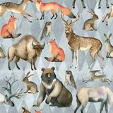Watercolor realistic forest animal sketch. Seamles pattern about red fox, hare, brown bear, deer, elk, owl, bison, stag. Watercolor illustration of wild red fox stock illustration