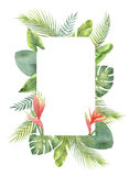 Watercolor rectangular frame tropical leaves and branches isolated on white background. Illustration for design wedding invitations, greeting cards, postcards Royalty Free Stock Photos