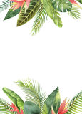 Watercolor rectangular frame tropical leaves and branches on white background. Illustration for design wedding invitations, greeting cards, postcards with royalty free illustration