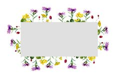 Watercolor rectangular frame of wild flowers royalty free illustration