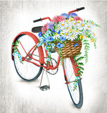 Watercolor red bicycle with flower basket. Watercolor red bicycle on shabby grey wooden background stock illustration