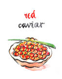 Watercolor red caviar Royalty Free Stock Photo