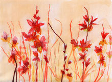 Watercolor red flower. On paper Stock Photos