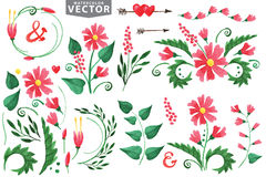 Watercolor red flowers,branshes,floral elements Royalty Free Stock Photo