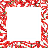 Watercolor red hot chili chilli spicy pepper frame border.  Royalty Free Stock Photo